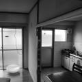住吉区の家 (1)